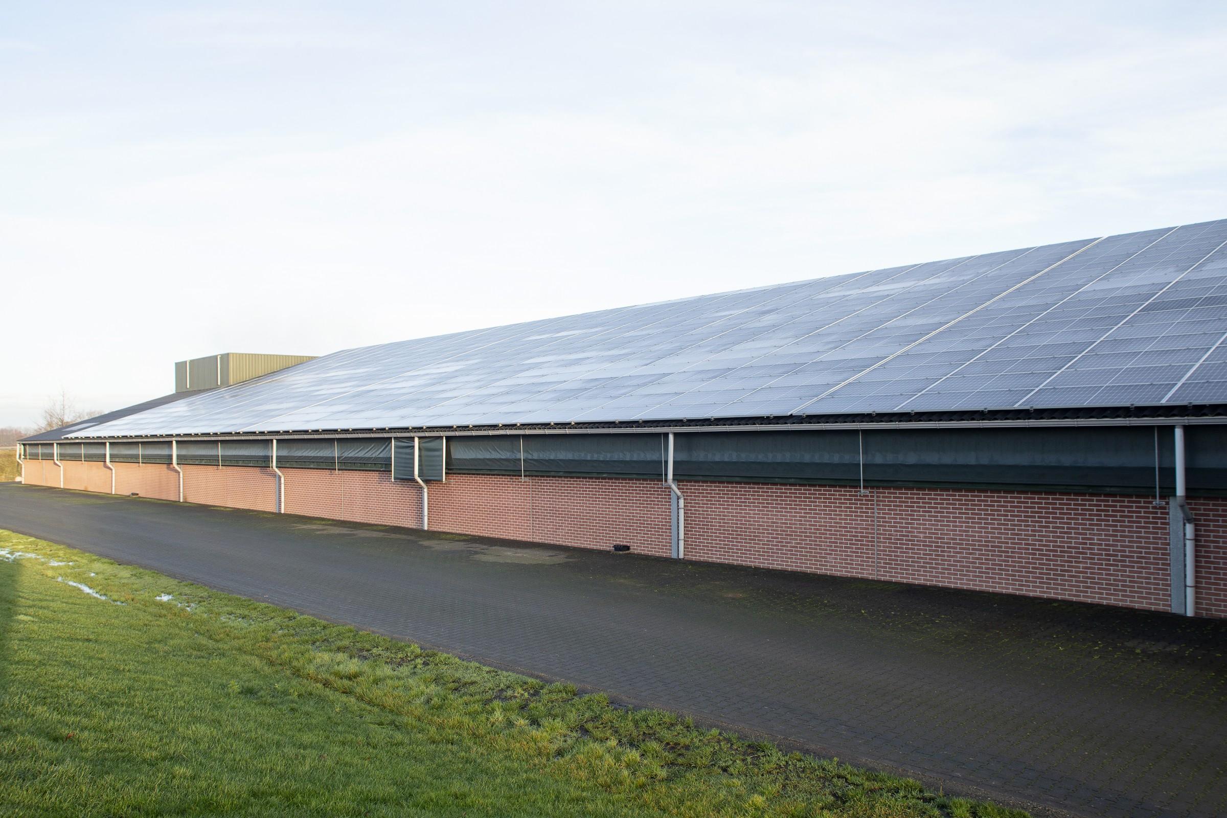 In- en verkoop en installatie van zonnepanelen